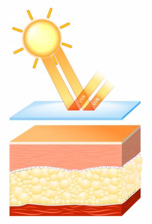 Rekkomendation för ärrvävnad i solljus